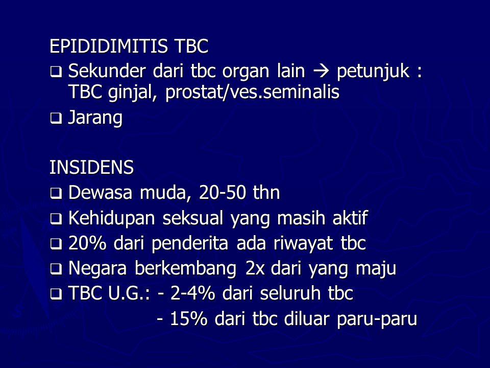EPIDIDIMITIS TBC  Sekunder dari tbc organ lain  petunjuk : TBC ginjal, prostat/ves.seminalis  Jarang INSIDENS  Dewasa muda, 20-50 thn  Kehidupan