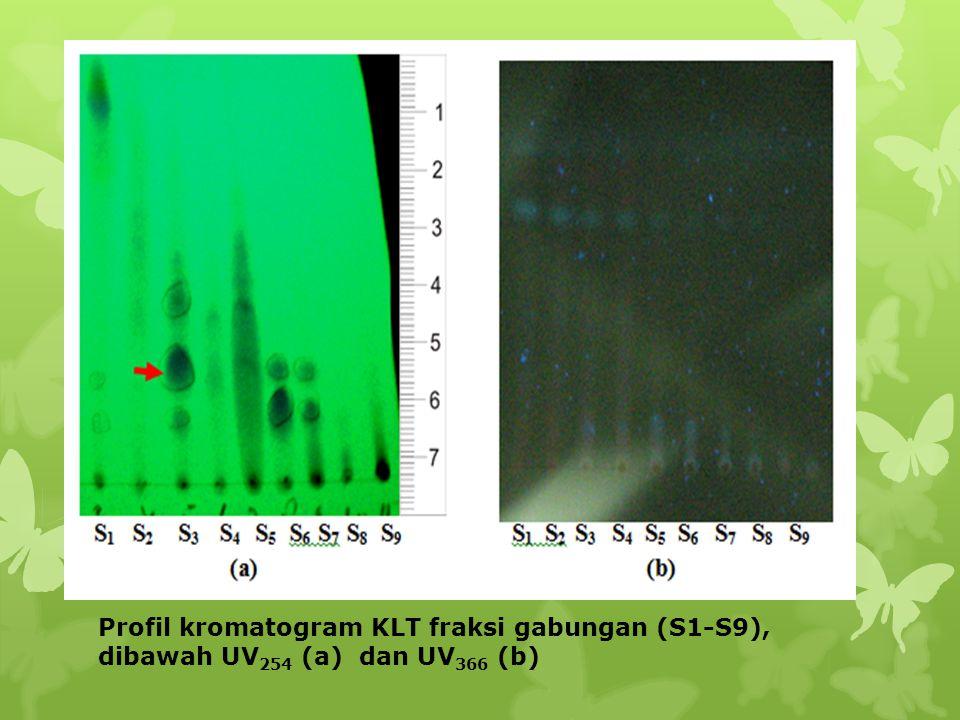 Profil kromatogram KLT fraksi gabungan (S1-S9), dibawah UV 254 (a) dan UV 366 (b)