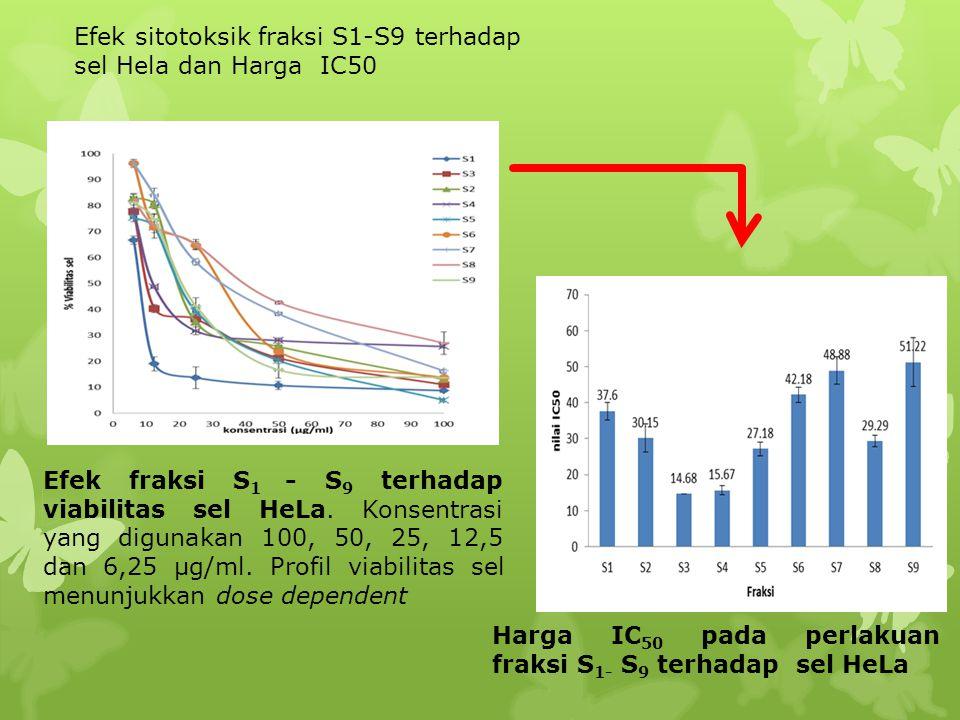 Efek fraksi S 1 - S 9 terhadap viabilitas sel HeLa. Konsentrasi yang digunakan 100, 50, 25, 12,5 dan 6,25 µg/ml. Profil viabilitas sel menunjukkan dos