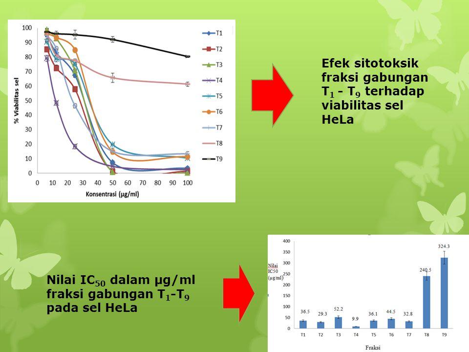 Efek sitotoksik fraksi gabungan T 1 - T 9 terhadap viabilitas sel HeLa Nilai IC 50 dalam µg/ml fraksi gabungan T 1 -T 9 pada sel HeLa