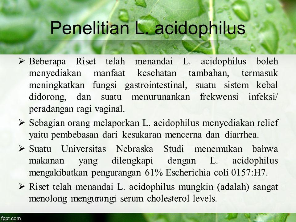Penelitian L. acidophilus  Beberapa Riset telah menandai L. acidophilus boleh menyediakan manfaat kesehatan tambahan, termasuk meningkatkan fungsi ga