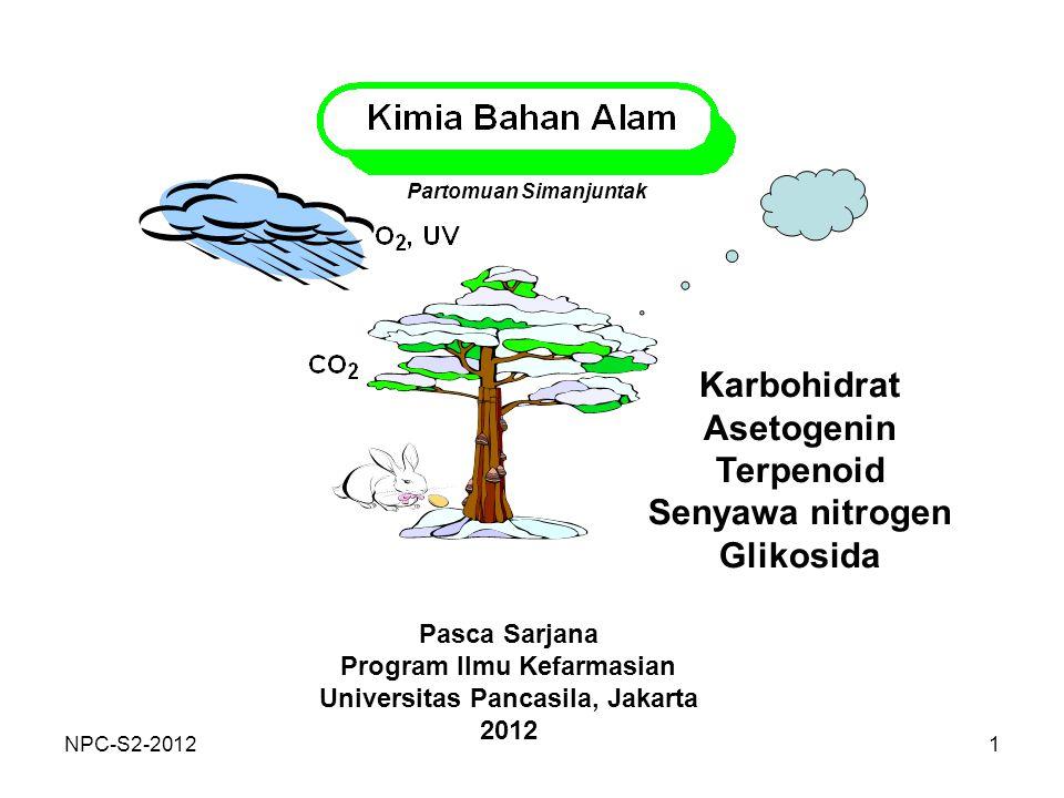 1 Karbohidrat Asetogenin Terpenoid Senyawa nitrogen Glikosida Partomuan Simanjuntak Pasca Sarjana Program Ilmu Kefarmasian Universitas Pancasila, Jaka