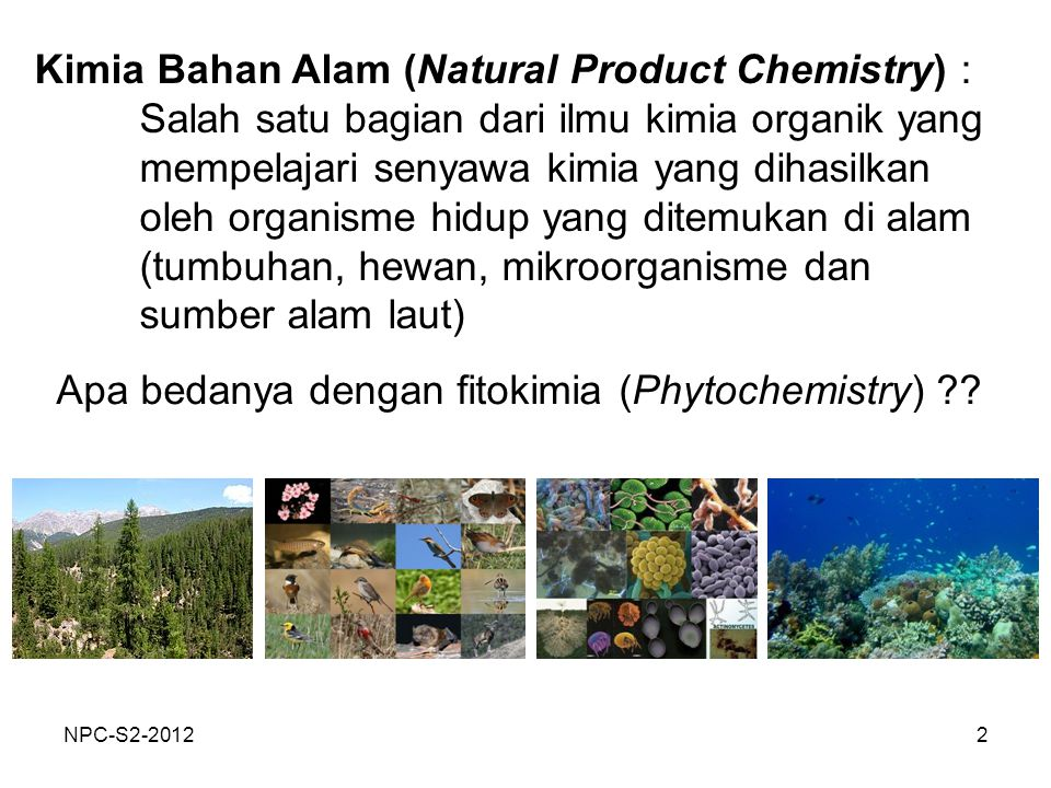 2 Kimia Bahan Alam (Natural Product Chemistry) : Salah satu bagian dari ilmu kimia organik yang mempelajari senyawa kimia yang dihasilkan oleh organis