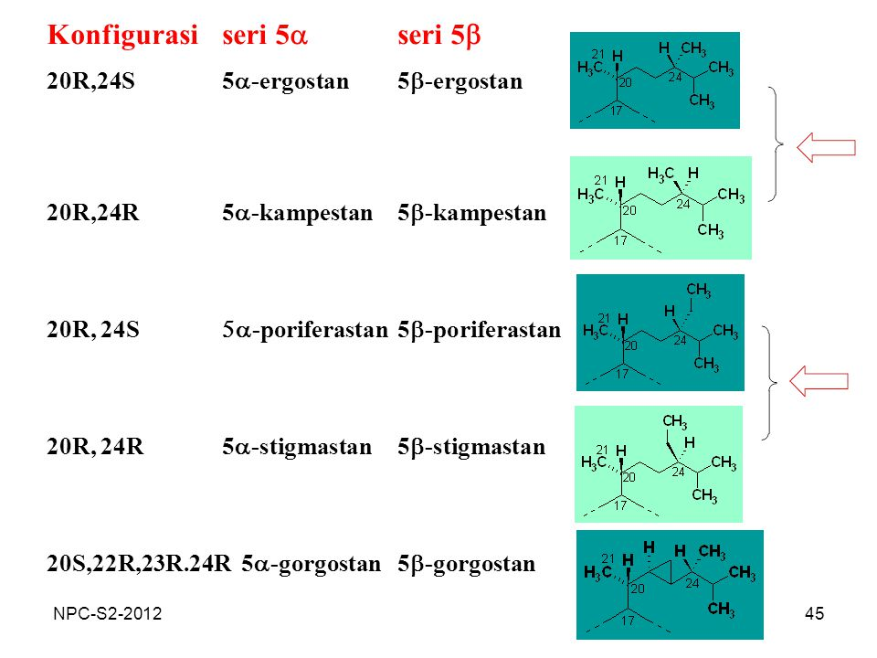 45 Konfigurasiseri 5  seri 5  20R,24S5  -ergostan5  -ergostan 20R,24R5  -kampestan5  -kampestan 20R, 24S  -poriferastan5  -poriferastan 20R,