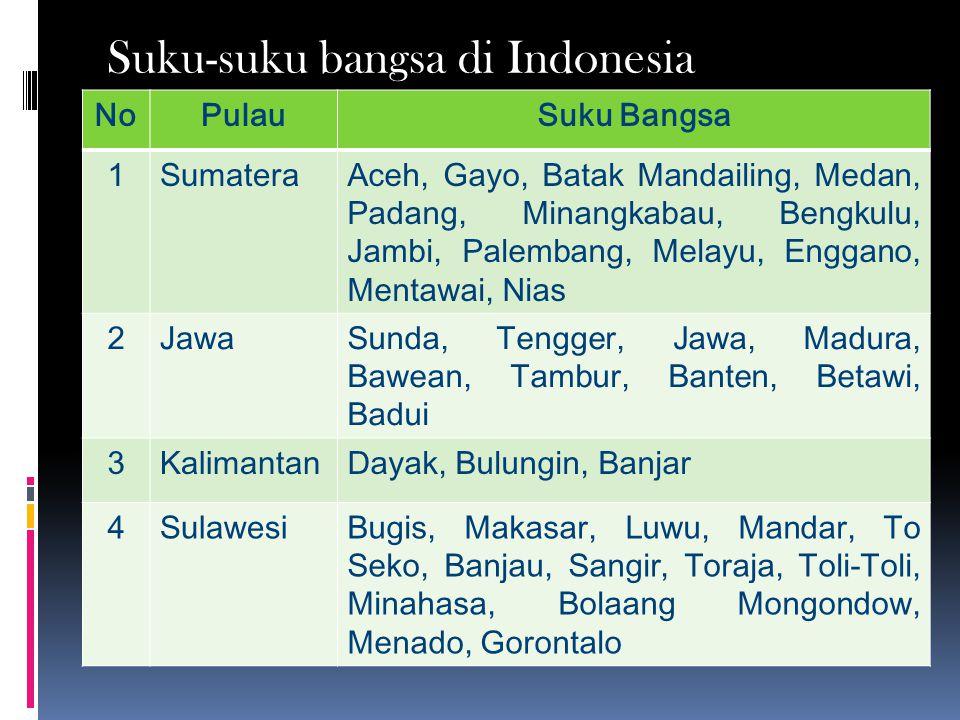 Suku-suku bangsa di Indonesia NoPulauSuku Bangsa 1SumateraAceh, Gayo, Batak Mandailing, Medan, Padang, Minangkabau, Bengkulu, Jambi, Palembang, Melayu
