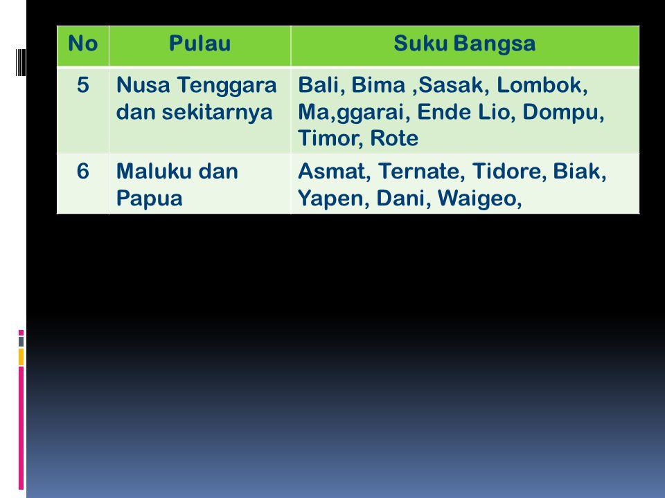 NoPulauSuku Bangsa 5Nusa Tenggara dan sekitarnya Bali, Bima,Sasak, Lombok, Ma,ggarai, Ende Lio, Dompu, Timor, Rote 6Maluku dan Papua Asmat, Ternate, T
