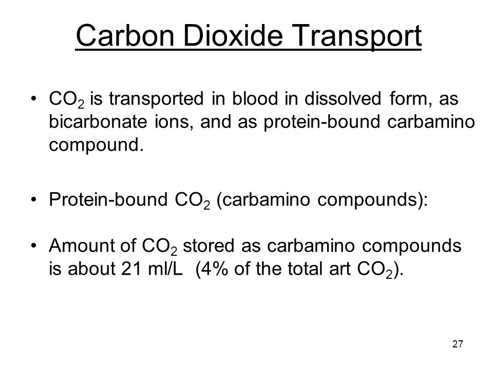 27 Carbon Dioxide Transport CO 2 is transported in blood in dissolved form, as bicarbonate ions, and as protein-bound carbamino compound.
