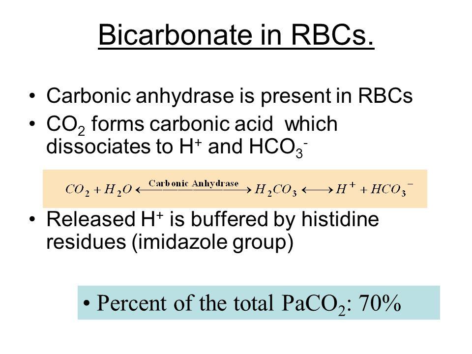 Bicarbonate in RBCs.