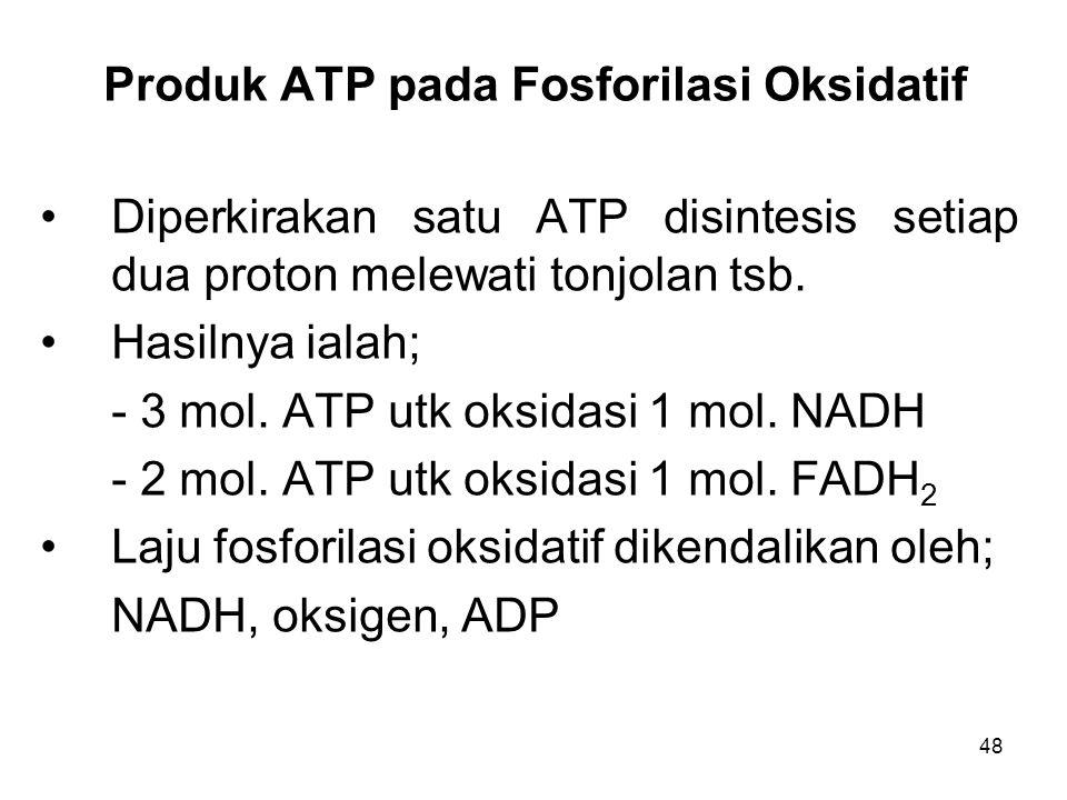 48 Produk ATP pada Fosforilasi Oksidatif Diperkirakan satu ATP disintesis setiap dua proton melewati tonjolan tsb.