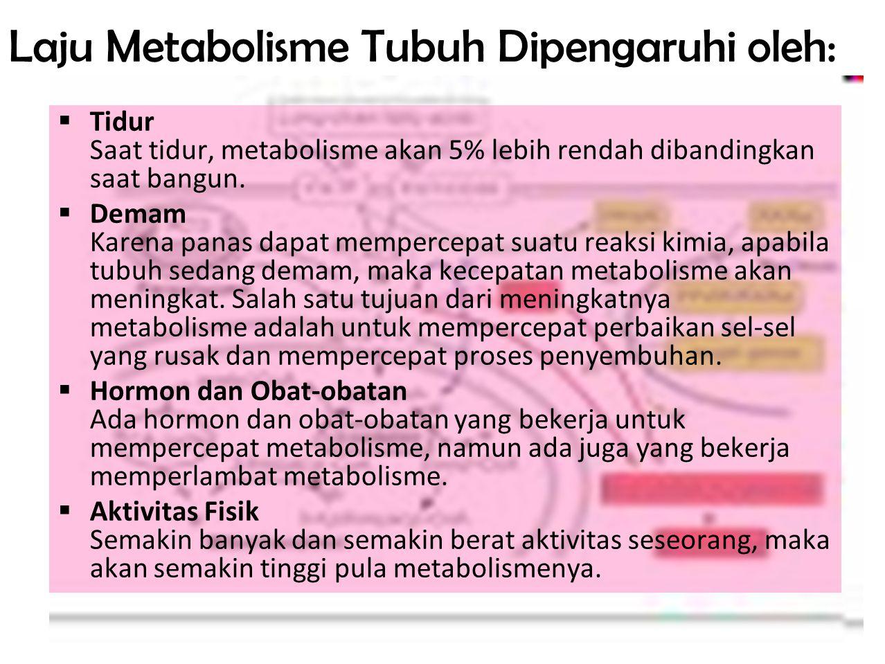 11 Laju Metabolisme Tubuh Dipengaruhi oleh:  Usia Kecepatan metabolisme memang berkurang sejalan dengan bertambahnya usia  Jenis Kelamin Wanita memiliki metabolisme yang lebih rendah daripada pria.