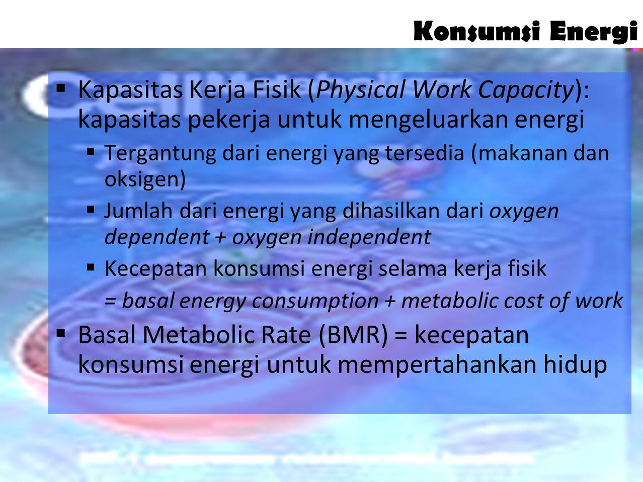13 Pengukuran Kerja Fisik  Konsep Horse Power (foot-pounds of work per minute) oleh Taylor (tidak memuaskan)  Tingkat konsumsi energi untuk mengukur pengeluaran energi  Perubahan tingkat kerja jantung dan konsumsi oksigen (metode baru)