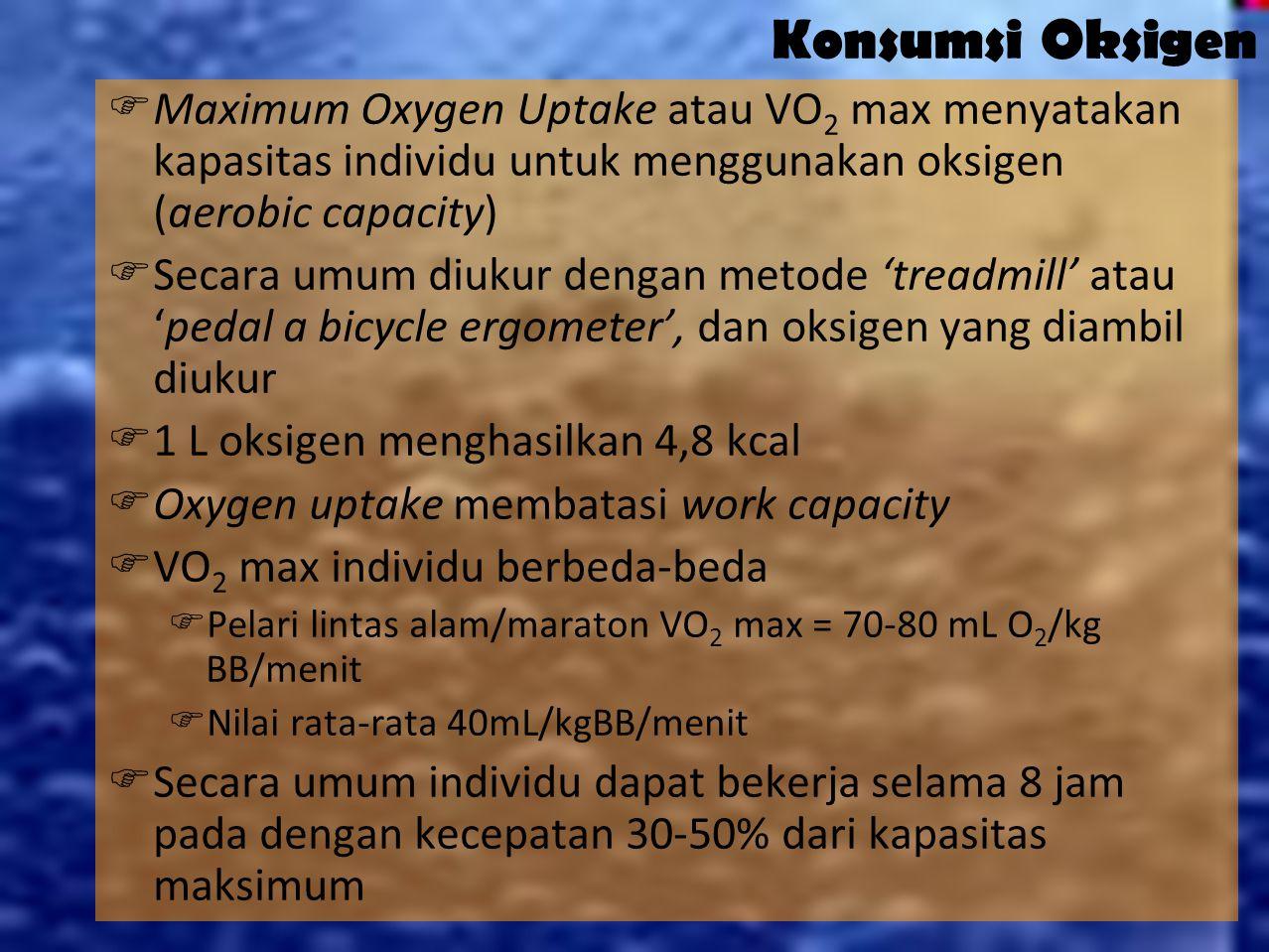19 Menghitung Kebutuhan Kalori KALORI BASAL Laki-laki : BB (kg) x 30 kalori/kg =.......
