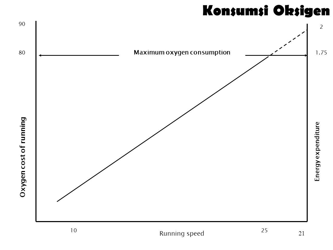20 Konsumsi Oksigen  Maximum Oxygen Uptake atau VO 2 max menyatakan kapasitas individu untuk menggunakan oksigen (aerobic capacity)  Secara umum diukur dengan metode 'treadmill' atau 'pedal a bicycle ergometer', dan oksigen yang diambil diukur  1 L oksigen menghasilkan 4,8 kcal  Oxygen uptake membatasi work capacity  VO 2 max individu berbeda-beda  Pelari lintas alam/maraton VO 2 max = 70-80 mL O 2 /kg BB/menit  Nilai rata-rata 40mL/kgBB/menit  Secara umum individu dapat bekerja selama 8 jam pada dengan kecepatan 30-50% dari kapasitas maksimum