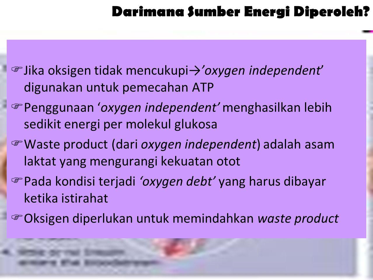 8 Darimana Sumber Energi Diperoleh.