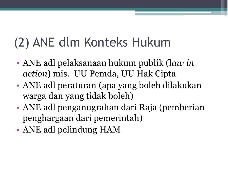 (2) ANE dlm Konteks Hukum ANE adl pelaksanaan hukum publik (law in action) mis. UU Pemda, UU Hak Cipta ANE adl peraturan (apa yang boleh dilakukan war