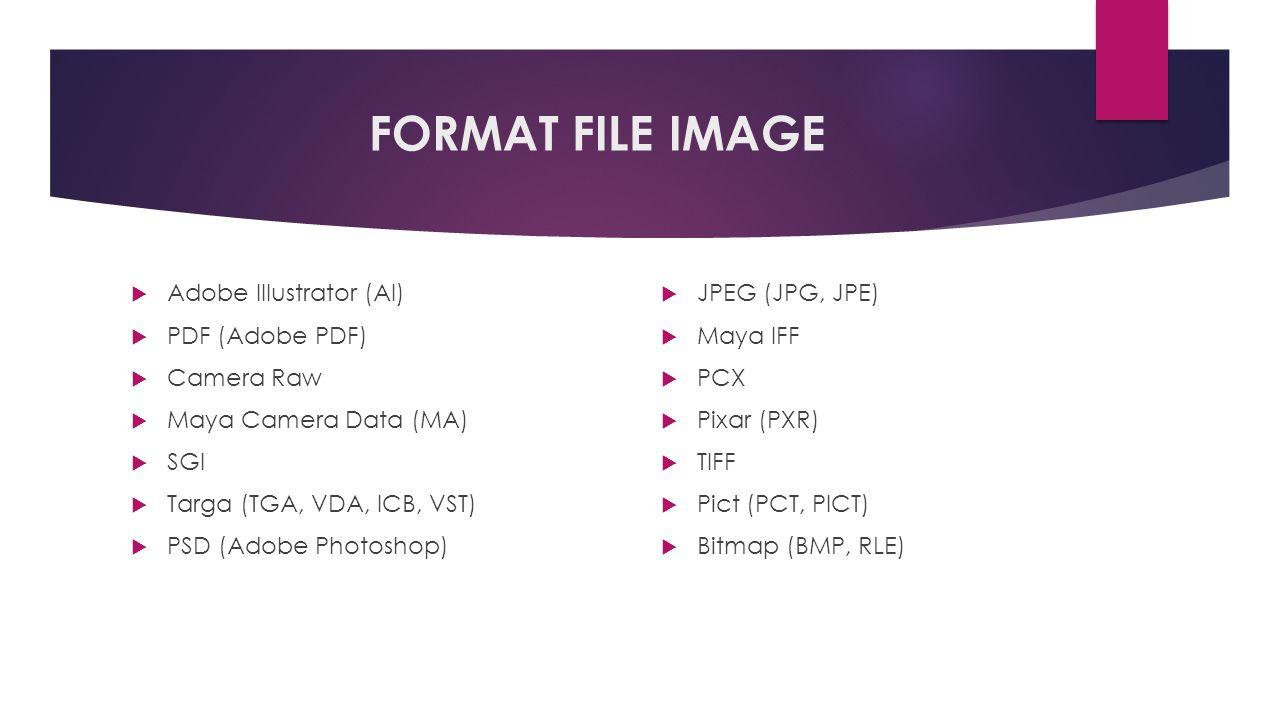 FORMAT FILE IMAGE  Adobe Illustrator (AI)  PDF (Adobe PDF)  Camera Raw  Maya Camera Data (MA)  SGI  Targa (TGA, VDA, ICB, VST)  PSD (Adobe Photoshop)  JPEG (JPG, JPE)  Maya IFF  PCX  Pixar (PXR)  TIFF  Pict (PCT, PICT)  Bitmap (BMP, RLE)