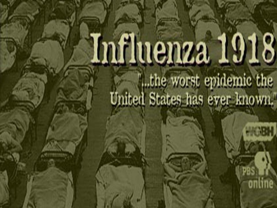 Fakta tentang Influenza 60% kematian penderita influenza akibat adanya komplikasi dengan: PNEUMONIA 90% Kematian penderita Influenza komplikasi Pneumonia adalah lanjut usia (Usia >65 tahun) dan anak usia < 1 tahun