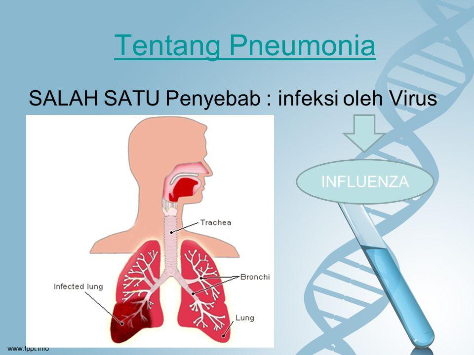 Asinus terisi eksudat dan infiltrasi Sel radang kedalam alveoli