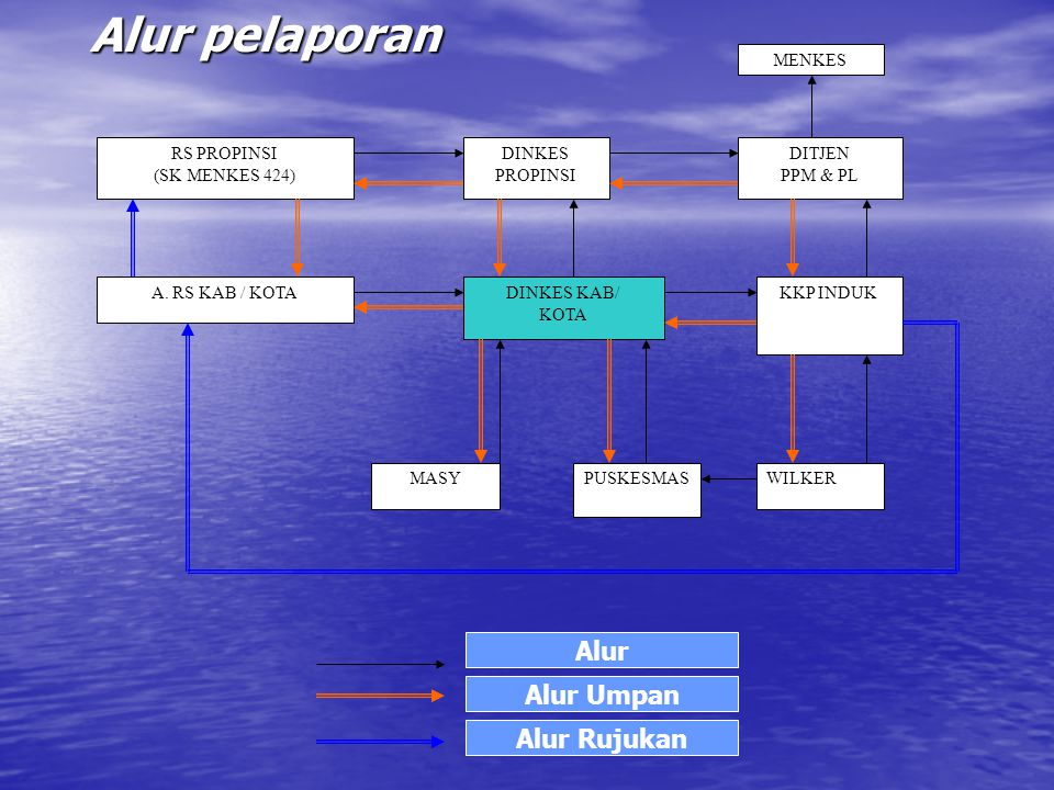 Alur pelaporan MENKES DITJEN PPM & PL DINKES PROPINSI RS PROPINSI (SK MENKES 424) A.