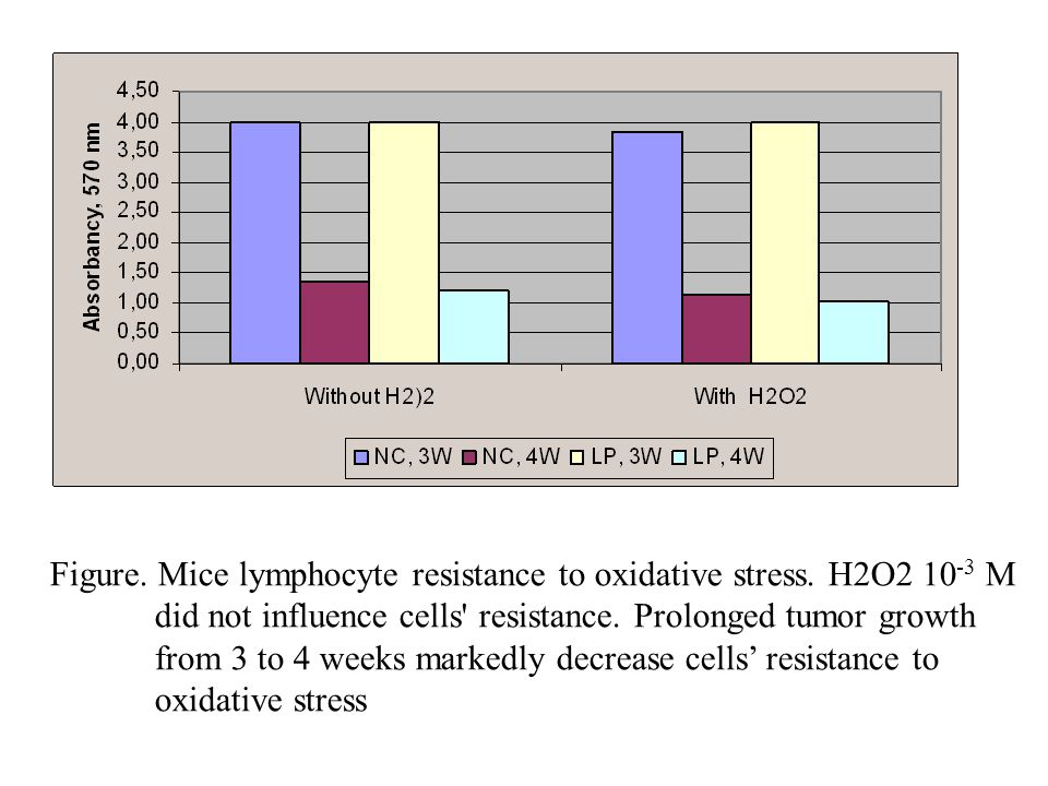 Figure. Mice lymphocyte resistance to oxidative stress. H2O2 10 -3 M did not influence cells' resistance. Prolonged tumor growth from 3 to 4 weeks mar