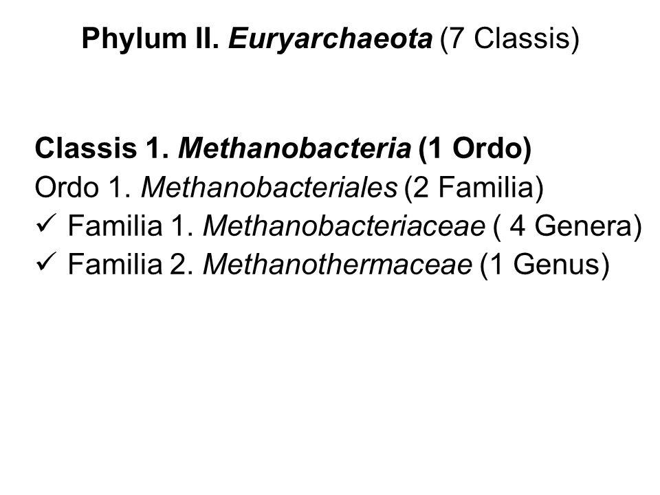 Phylum II. Euryarchaeota (7 Classis) Classis 1. Methanobacteria (1 Ordo) Ordo 1. Methanobacteriales (2 Familia) Familia 1. Methanobacteriaceae ( 4 Gen