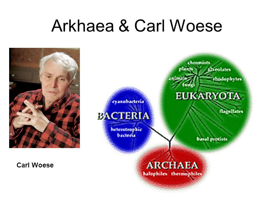 Arkhaea & Carl Woese Carl Woese