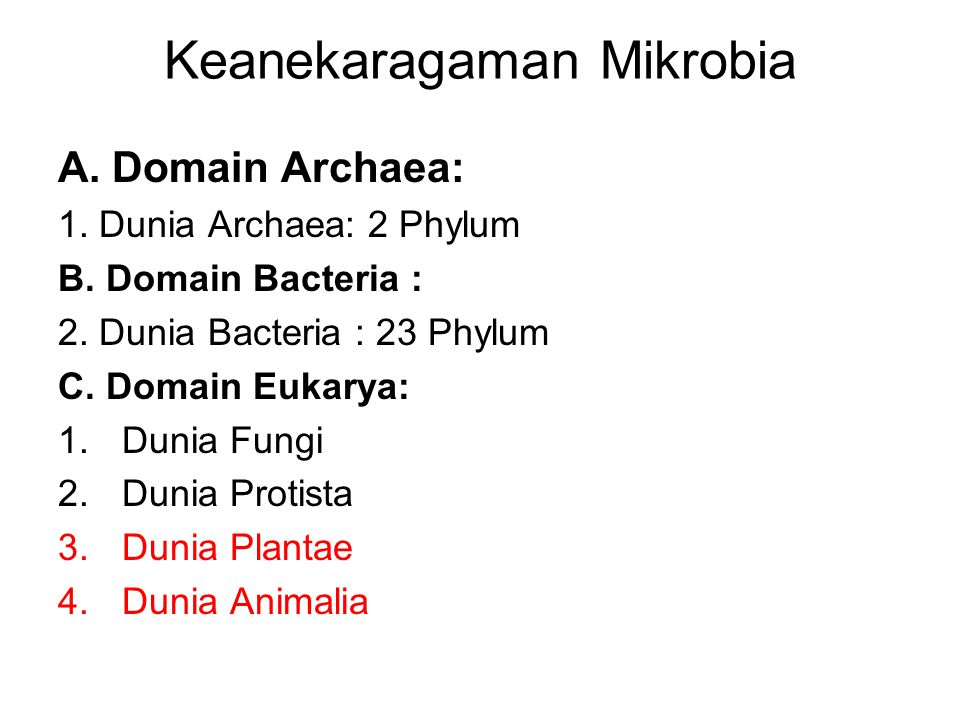 Keanekaragaman Mikrobia A. Domain Archaea: 1. Dunia Archaea: 2 Phylum B. Domain Bacteria : 2. Dunia Bacteria : 23 Phylum C. Domain Eukarya: 1.Dunia Fu