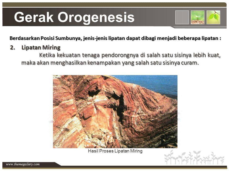 www.themegallery.com Gerak Orogenesis Berdasarkan Posisi Sumbunya, jenis-jenis lipatan dapat dibagi menjadi beberapa lipatan : 2.Lipatan Miring Ketika