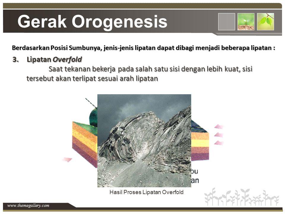 www.themegallery.com Gerak Orogenesis Berdasarkan Posisi Sumbunya, jenis-jenis lipatan dapat dibagi menjadi beberapa lipatan : 3.Lipatan Overfold Saat