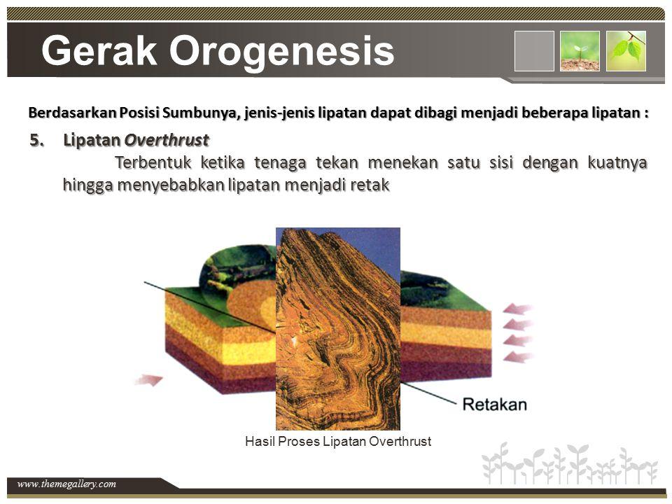 www.themegallery.com Gerak Orogenesis Berdasarkan Posisi Sumbunya, jenis-jenis lipatan dapat dibagi menjadi beberapa lipatan : 5.Lipatan Overthrust Te