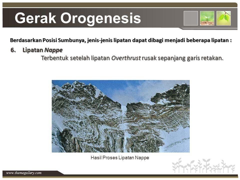 www.themegallery.com Gerak Orogenesis Berdasarkan Posisi Sumbunya, jenis-jenis lipatan dapat dibagi menjadi beberapa lipatan : 6.Lipatan Nappe Terbent