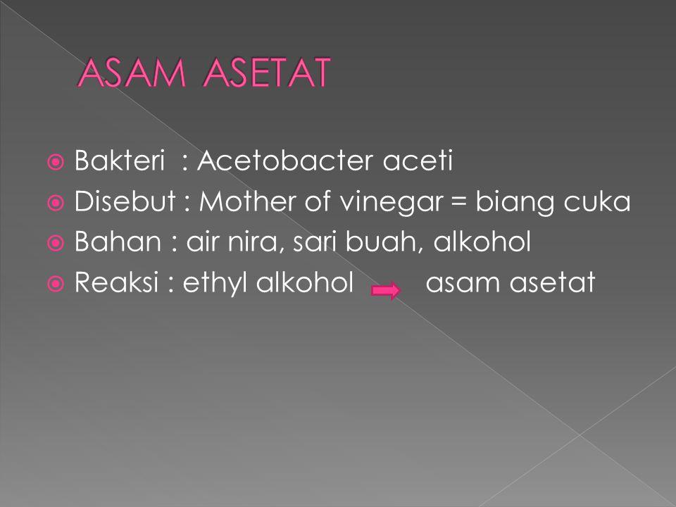  Bakteri : Acetobacter aceti  Disebut : Mother of vinegar = biang cuka  Bahan : air nira, sari buah, alkohol  Reaksi : ethyl alkohol asam asetat
