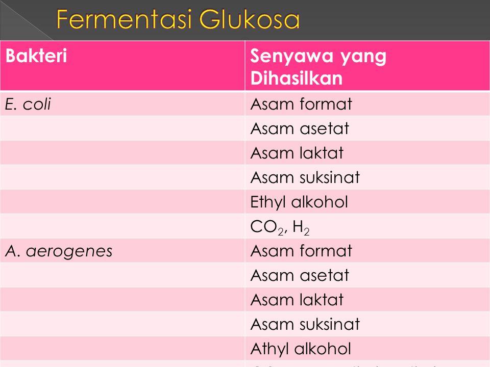 BakteriSenyawa yang Dihasilkan E. coliAsam format Asam asetat Asam laktat Asam suksinat Ethyl alkohol CO 2, H 2 A. aerogenesAsam format Asam asetat As