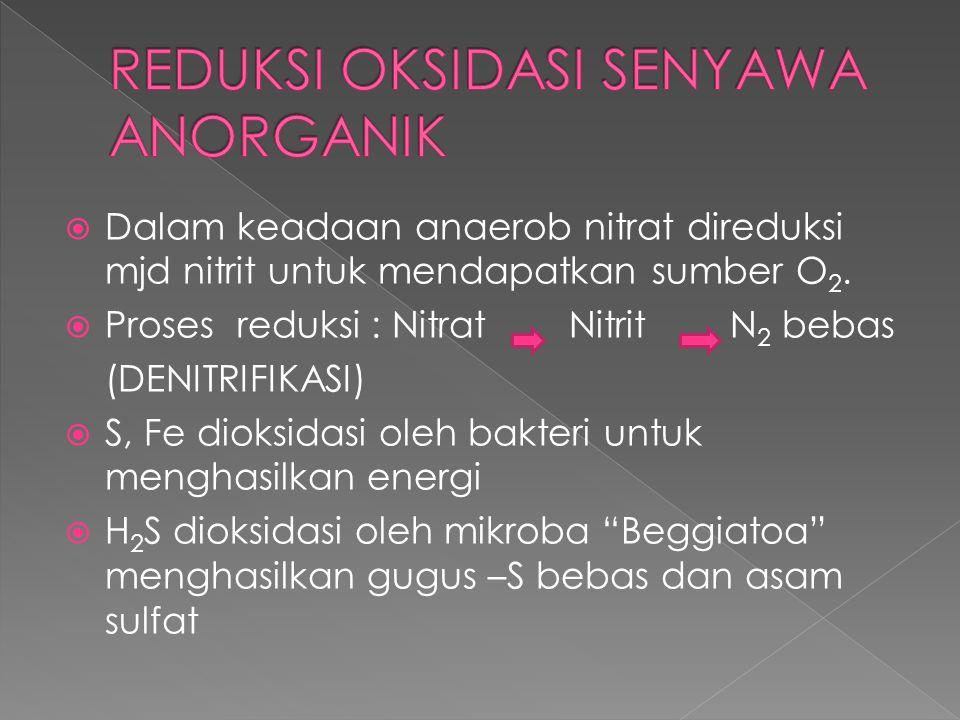  Dalam keadaan anaerob nitrat direduksi mjd nitrit untuk mendapatkan sumber O 2.  Proses reduksi : Nitrat NitritN 2 bebas (DENITRIFIKASI)  S, Fe di