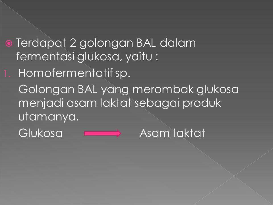  Terdapat 2 golongan BAL dalam fermentasi glukosa, yaitu : 1. Homofermentatif sp. Golongan BAL yang merombak glukosa menjadi asam laktat sebagai prod