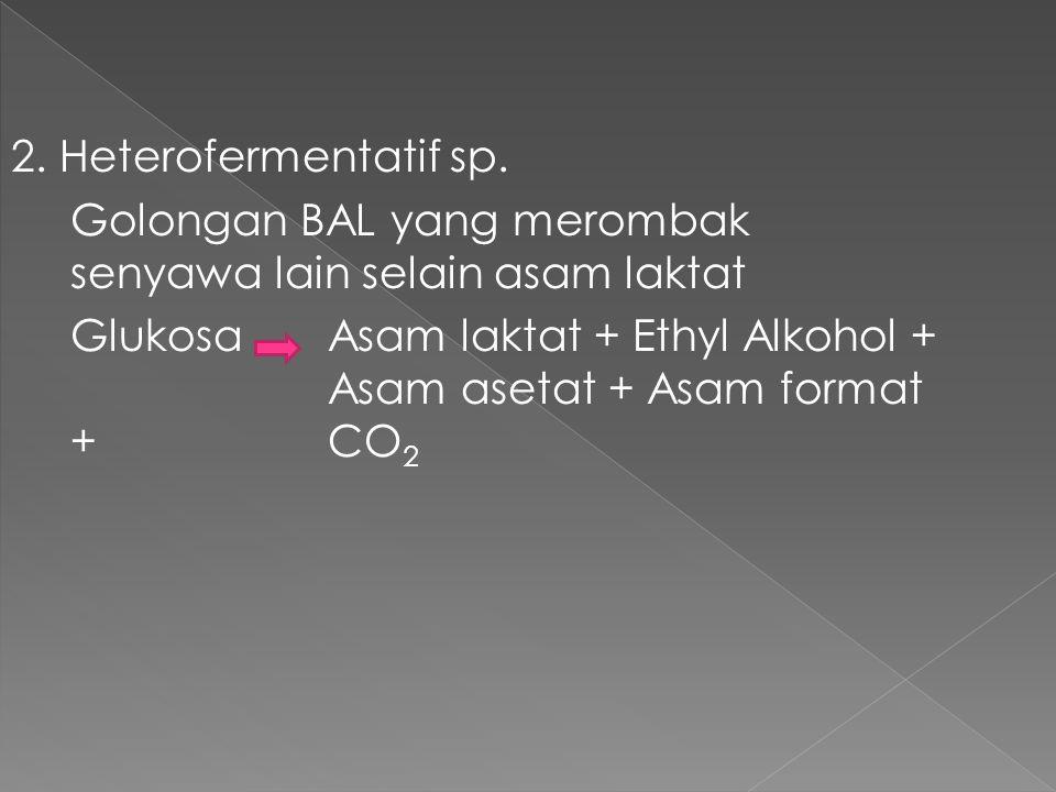 2. Heterofermentatif sp. Golongan BAL yang merombak senyawa lain selain asam laktat Glukosa Asam laktat + Ethyl Alkohol + Asam asetat + Asam format +
