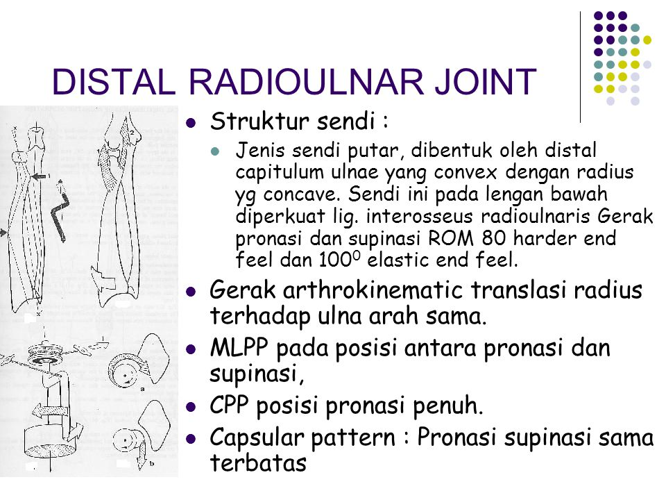 RADIO CARPAL JOINT Sendi ovoid Terdapat meniscus Corpus : scapoid – lunatum – triquetum Palmar / dorsal flexi  80° – 90° / 0 / 70° – 90° Elastic end feel Radial / ulnar deviation  15° / 0 / 30° – 40° Hard end feel