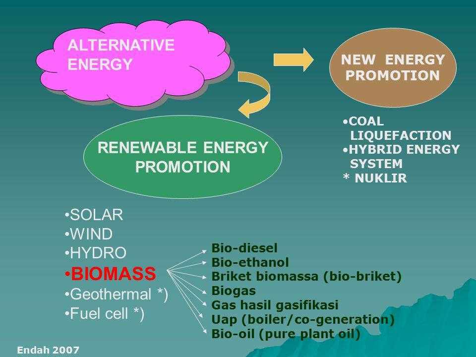 ALTERNATIVE ENERGY SOLAR WIND HYDRO BIOMASS Geothermal *) Fuel cell *) RENEWABLE ENERGY PROMOTION NEW ENERGY PROMOTION COAL LIQUEFACTION HYBRID ENERGY SYSTEM * NUKLIR Endah 2007 Bio-diesel Bio-ethanol Briket biomassa (bio-briket) Biogas Gas hasil gasifikasi Uap (boiler/co-generation) Bio-oil (pure plant oil)