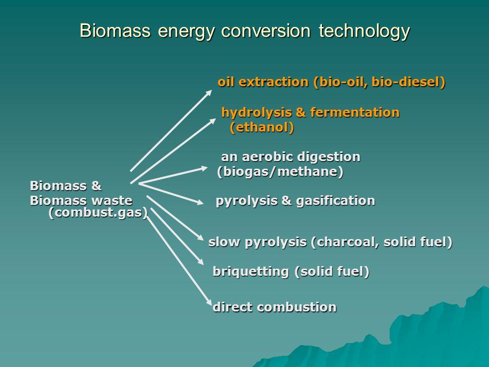 Endah,2007 Bahan baku Bio-diesel yang diunggulkan