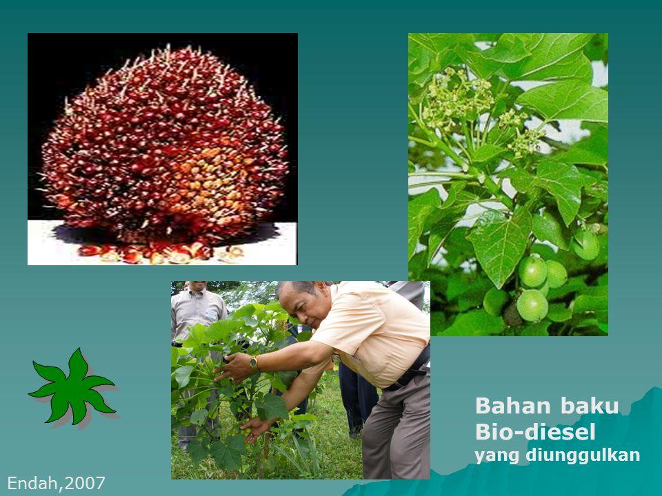 sago Ubi kayu ONGGOK jagung Bahan baku Bio-ethanol