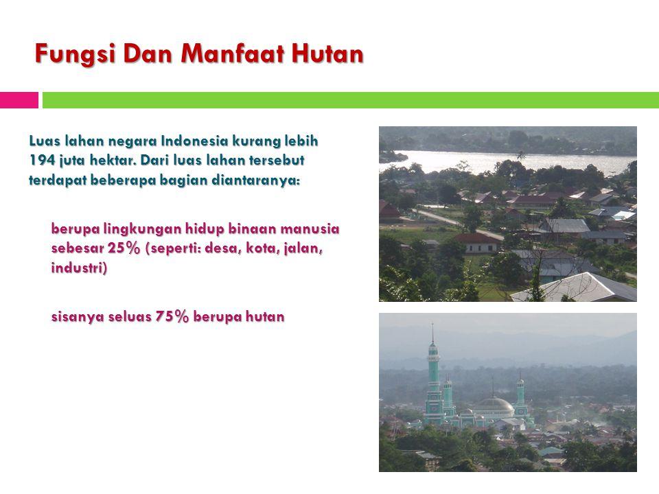 Fungsi Dan Manfaat Hutan Luas lahan negara Indonesia kurang lebih 194 juta hektar. Dari luas lahan tersebut terdapat beberapa bagian diantaranya: beru