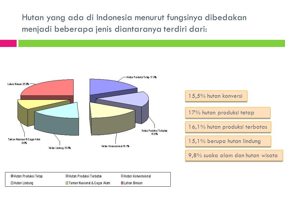 Hutan yang ada di Indonesia menurut fungsinya dibedakan menjadi beberapa jenis diantaranya terdiri dari: 15,5% hutan konversi 17% hutan produksi tetap 16,1% hutan produksi terbatas 9,8% suaka alam dan hutan wisata 15,1% berupa hutan lindung