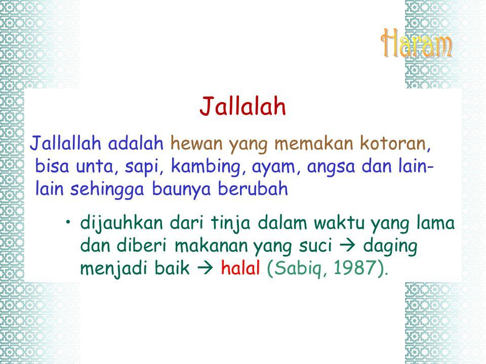 Jallalah Jallallah adalah hewan yang memakan kotoran, bisa unta, sapi, kambing, ayam, angsa dan lain- lain sehingga baunya berubah dijauhkan dari tinj