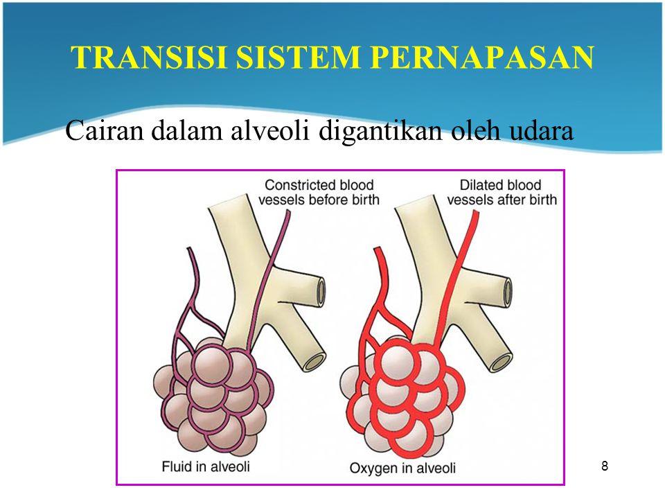 8 TRANSISI SISTEM PERNAPASAN Cairan dalam alveoli digantikan oleh udara
