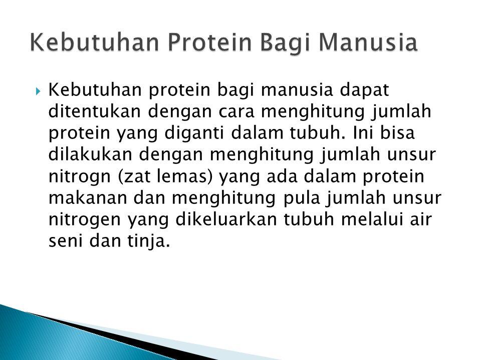  Kebutuhan protein bagi manusia dapat ditentukan dengan cara menghitung jumlah protein yang diganti dalam tubuh. Ini bisa dilakukan dengan menghitung