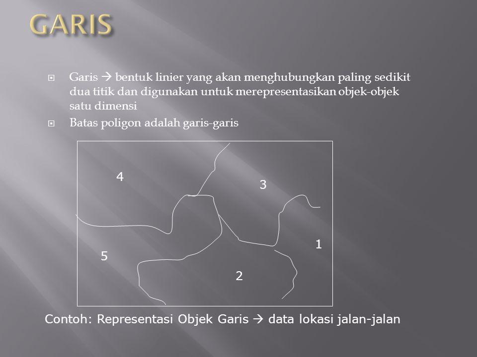  Garis  bentuk linier yang akan menghubungkan paling sedikit dua titik dan digunakan untuk merepresentasikan objek-objek satu dimensi  Batas poligon adalah garis-garis Contoh: Representasi Objek Garis  data lokasi jalan-jalan 4 5 3 2 1