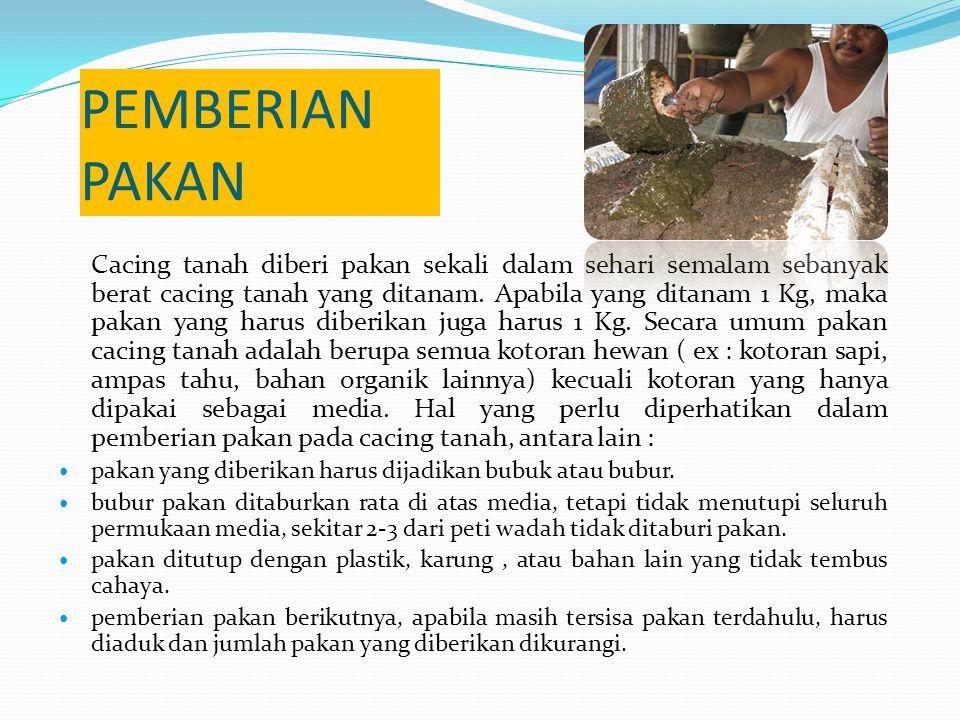 PEMBERIAN PAKAN Cacing tanah diberi pakan sekali dalam sehari semalam sebanyak berat cacing tanah yang ditanam.