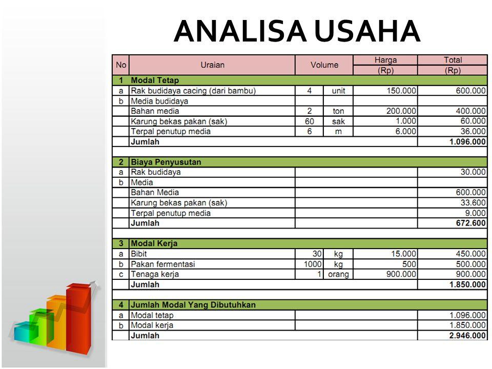 ANALISA USAHA