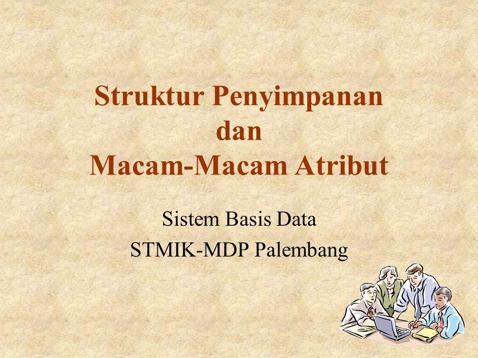Struktur Penyimpanan dan Macam-Macam Atribut Sistem Basis Data STMIK-MDP Palembang
