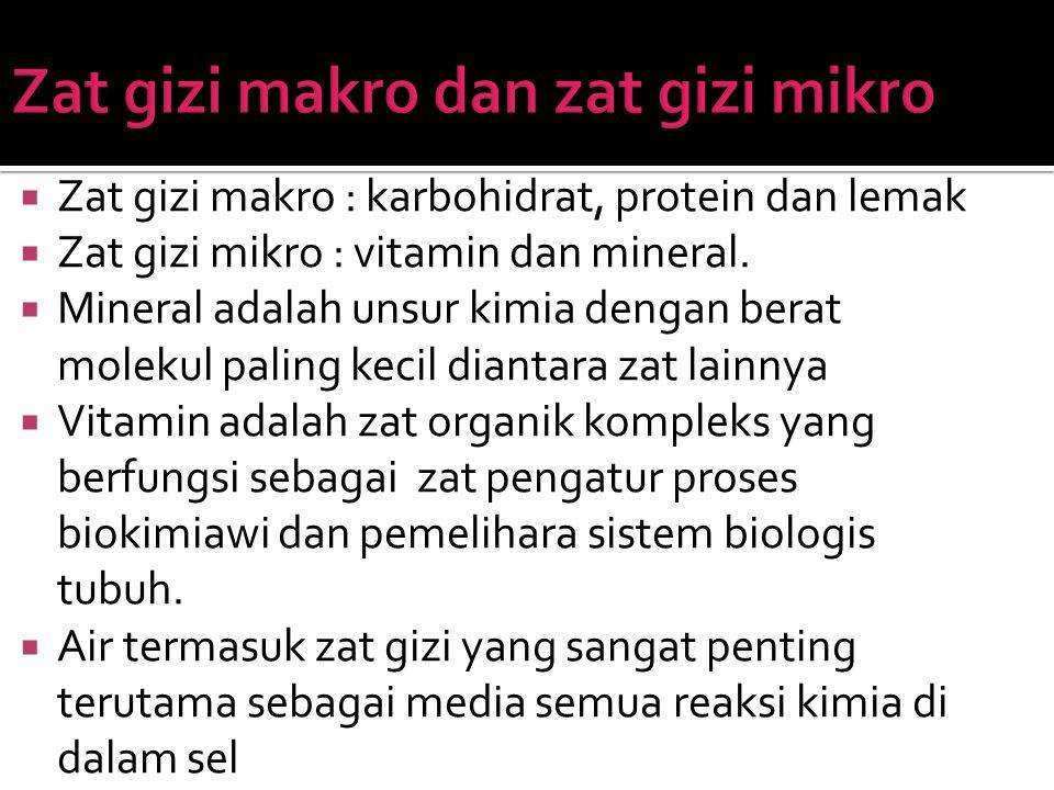 Zat gizi makro : karbohidrat, protein dan lemak  Zat gizi mikro : vitamin dan mineral.  Mineral adalah unsur kimia dengan berat molekul paling kec
